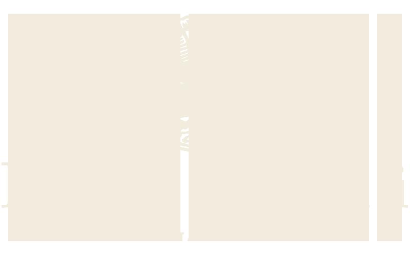 Pastanini