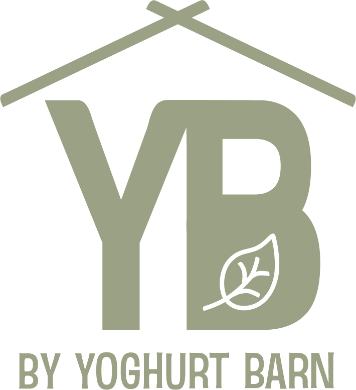 YB Haarlem